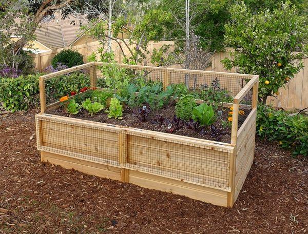 Garden in a Box Kit 6×3