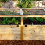 Garden in a Box Kit 6×3 with Lid / Trellis