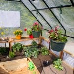 Garden in a box   8 x 8 with Greenhouse